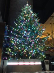 銀座クリスマス2014 ミキモト ツリー 01