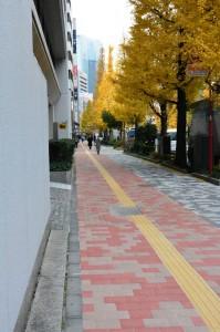 2014-12 昭和通り 新舗装