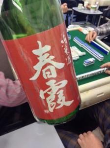 2015年 振る舞い酒 春霞 純米生 氷温熟成酒